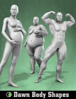 Dawn Body Shapes