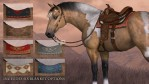 Western Tack for the HiveWire Horse