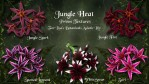 Jungle Heat for Lisa's Botanicals Asiatic Lily