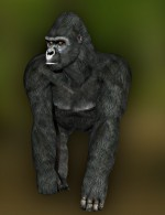 HiveWire Gorilla for Dusk