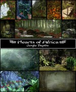 Hearts of Africa Value Stack - Jungle Depths