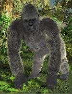 Poser Fur for the HiveWire Gorilla