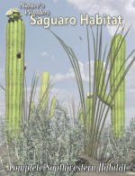 Nature's Wonders Habitat Value Stack-Saguaro Habitat