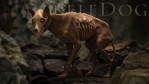 SkeleDog for the HiveWire Big Dog