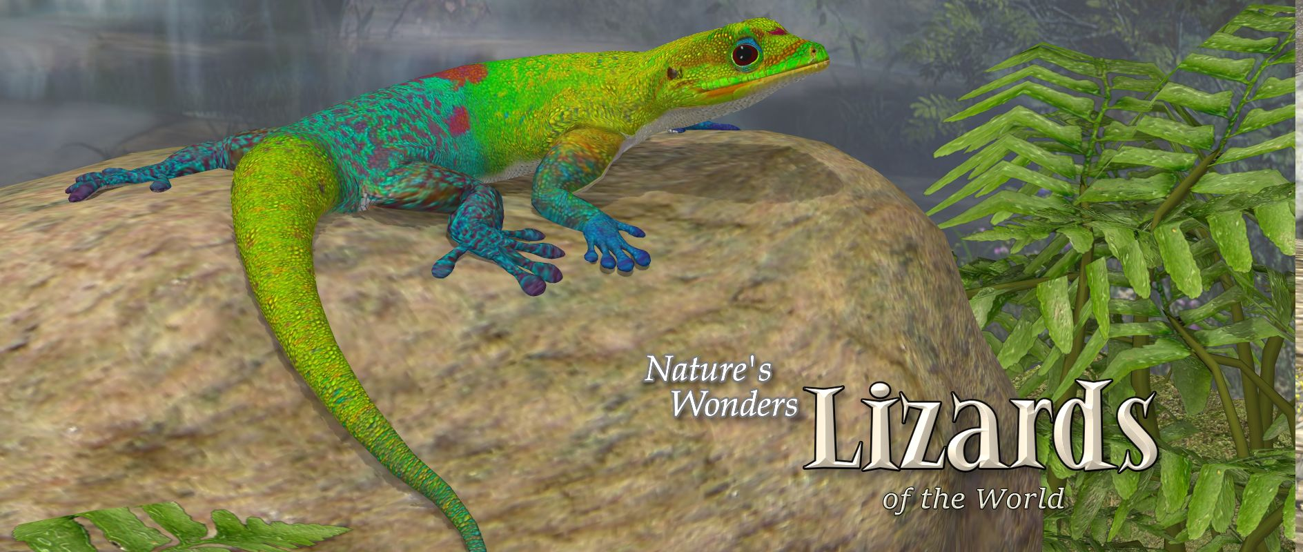 Nature's Wonders Lizards of the World Vol 1