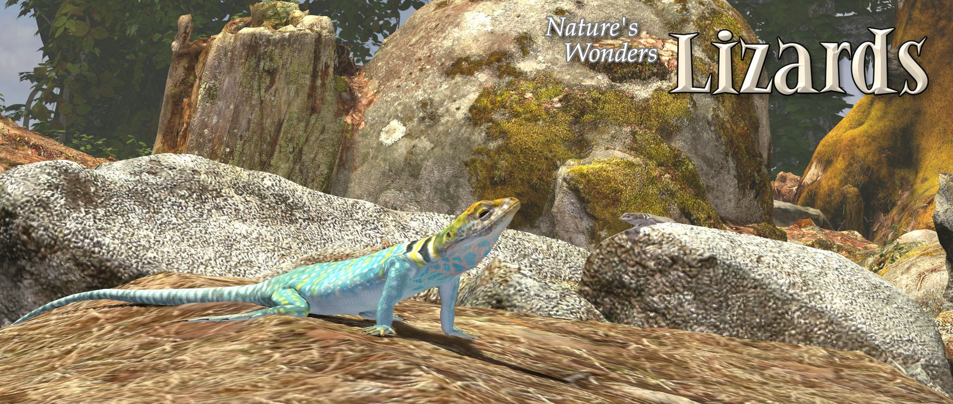 Nature's Wonders Lizards of the World Vol 2