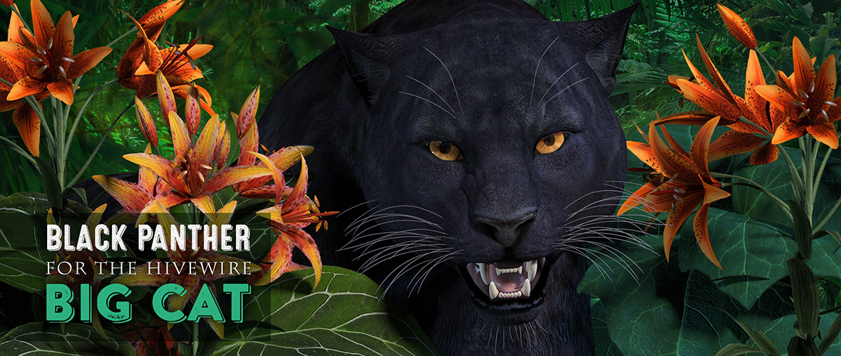 Black Panther for the HiveWire Big Cat